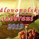 Královopolské vinobraní 2019